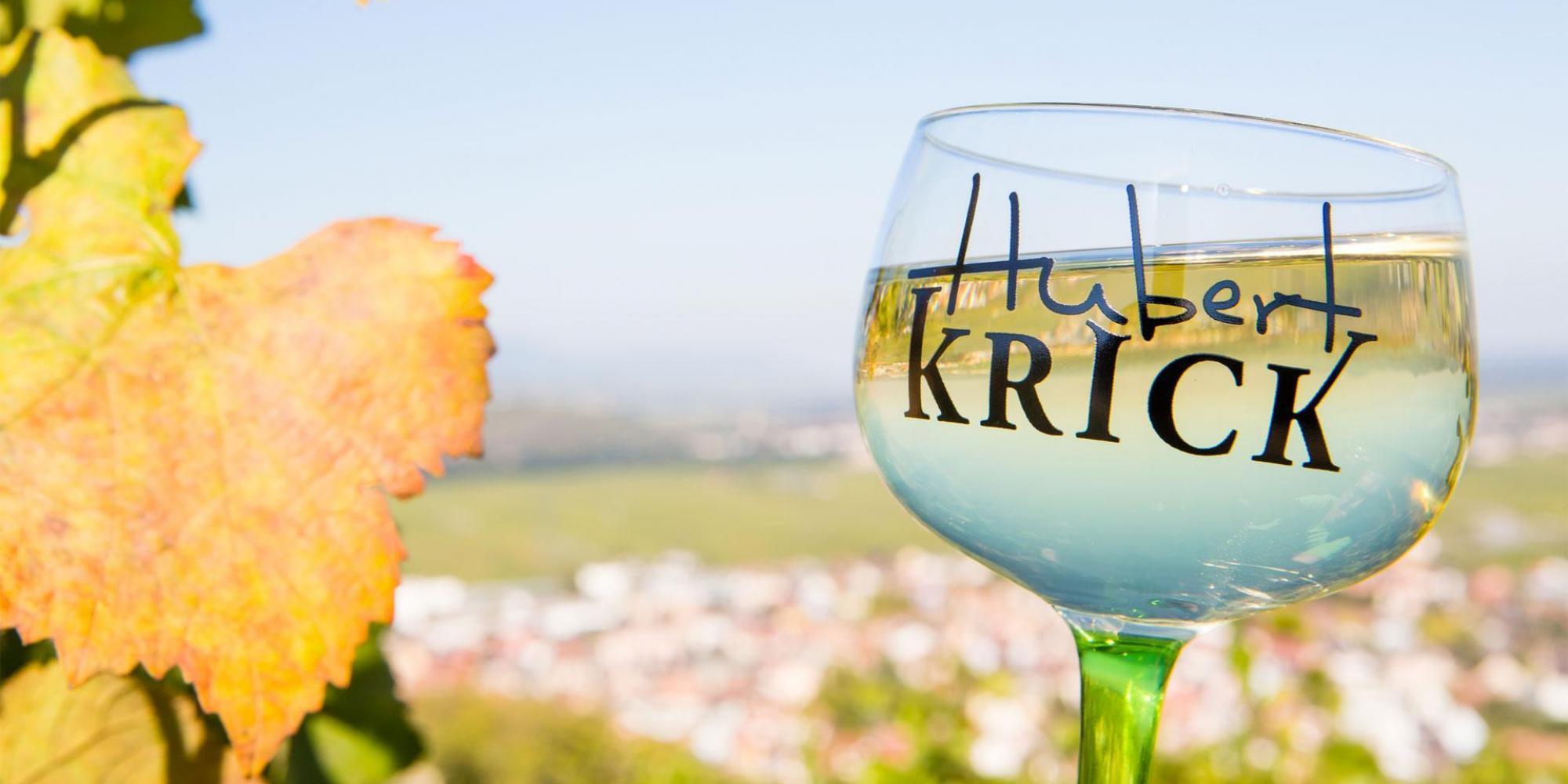 Reflet du village de Wintzenheim dans un verre de vin d'Alsace